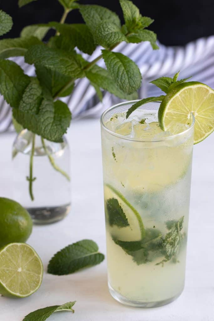 A garnished mojito in a glass.  Limes and a vase of mint are in the background.