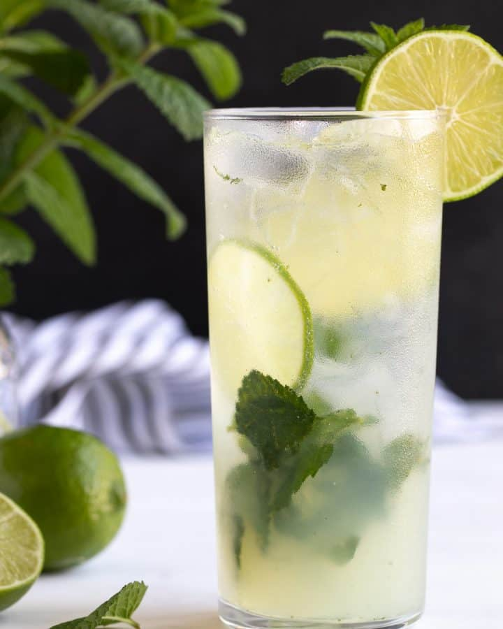Front view of a non-alcoholic mojito garnished with lime and fresh mint.